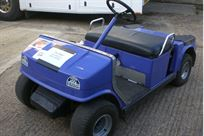 petrol-electric-golf-buggy