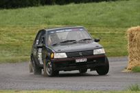peugeot-205-gti-19-tarmac-rally-car