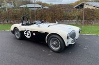 austin-healey-1004-m-spec-race-car