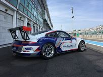 porsche-991-cup-38-with-abs