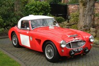 1959-austin-healey-1006-30-litre-lightweight