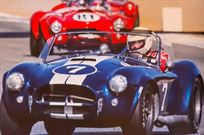 1964-ac-shelby-289-cobra-usrrc-fia-competitio