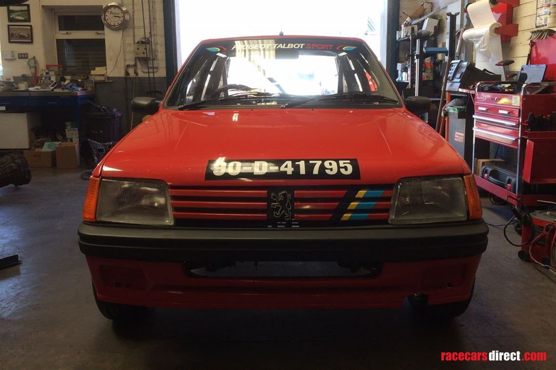 racecarsdirect - peugeot 205 rally car (new build)